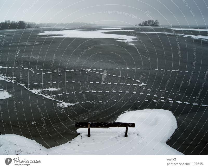 Sommerfrische Umwelt Natur Landschaft Horizont Winter Klima Wetter Schönes Wetter Eis Frost Schnee Seeufer Insel Stausee Bautzen frieren groß Unendlichkeit kalt