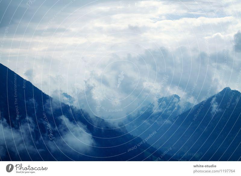 Mystisch Pflanze Wolken dunkel Berge u. Gebirge außergewöhnlich Wetter Nebel Wind Klima bedrohlich Niveau entdecken Unwetter Sturm mystisch Berghang