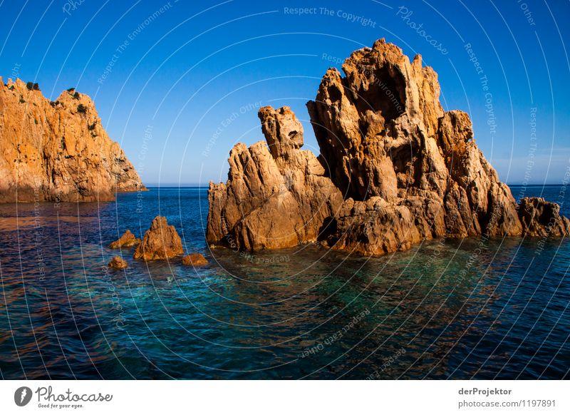 Felsige Küste von Korsika Natur Ferien & Urlaub & Reisen Pflanze Sommer Wasser Meer Landschaft Tier Ferne Umwelt Gefühle Felsen Tourismus Wellen Insel
