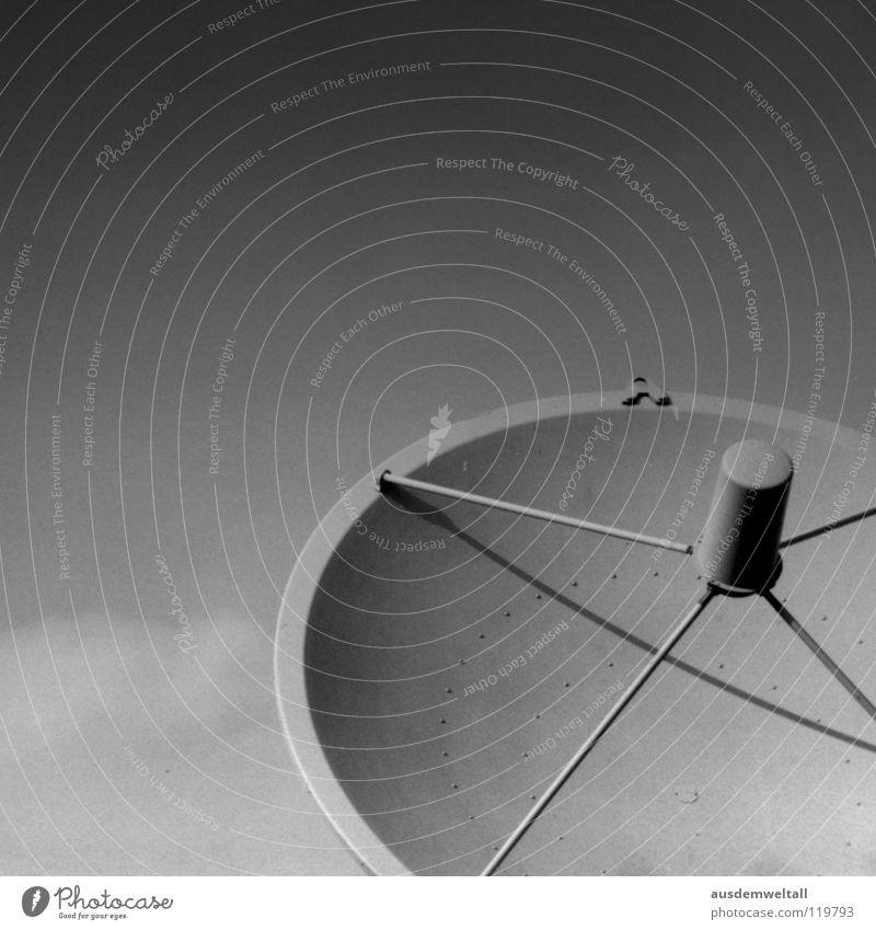 Empfang Satellit schwarz weiß Telekommunikation Detailaufnahme Technik & Technologie Begrüßung sky. himmel Schatten Außenaufnahme