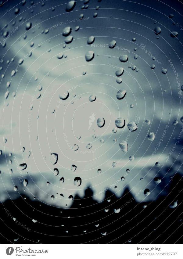 regen. Fenster Wolken Baum Gewitter Regen Wassertropfen Fensterscheibe blau Wetter Himmel Landschaft rain Außenaufnahme