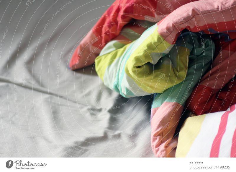 Monday morning Erholung ruhig Häusliches Leben Wohnung Schlafzimmer Bettwäsche Bettdecke träumen ästhetisch authentisch Freundlichkeit hell Wärme weich