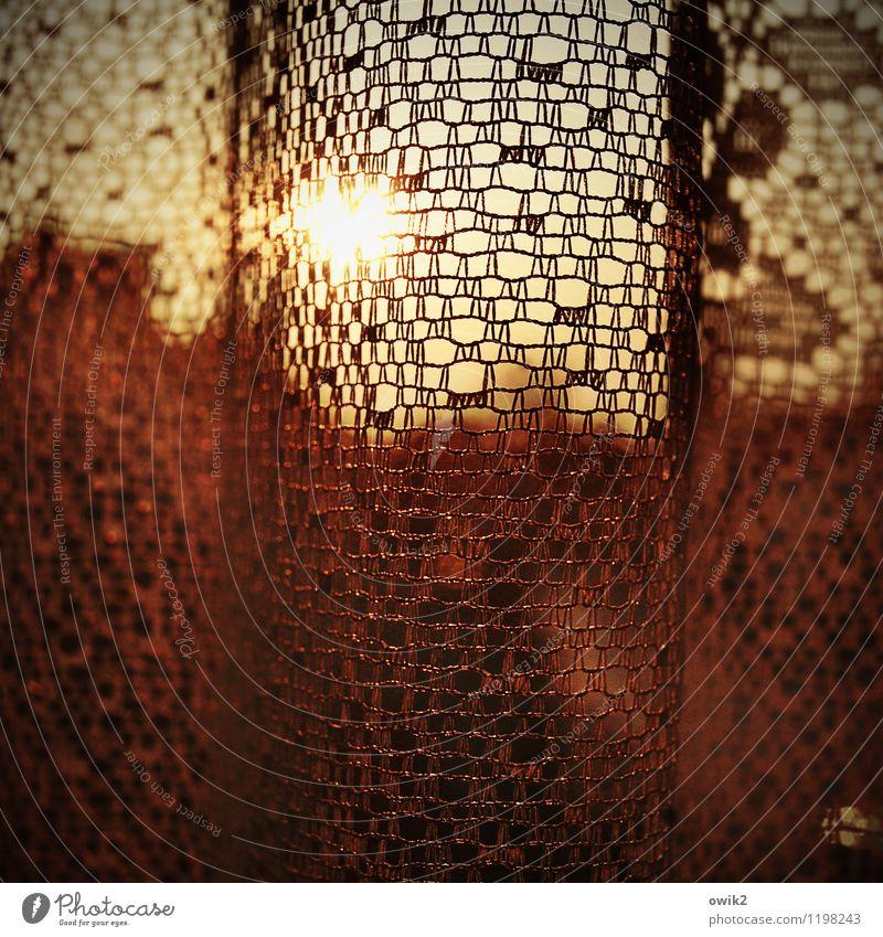 Gardinenpredigt Fenster hell Sonnenuntergang Abenddämmerung durchscheinend Sichtschutz Farbfoto Gedeckte Farben Innenaufnahme Muster Strukturen & Formen