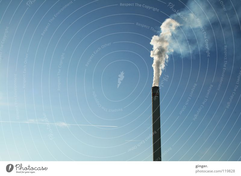 Viel Rauch im Nichts Himmel blau weiß oben hoch leer Industrie Rauch Wolkenloser Himmel Schornstein aufsteigen Umweltverschmutzung Emission