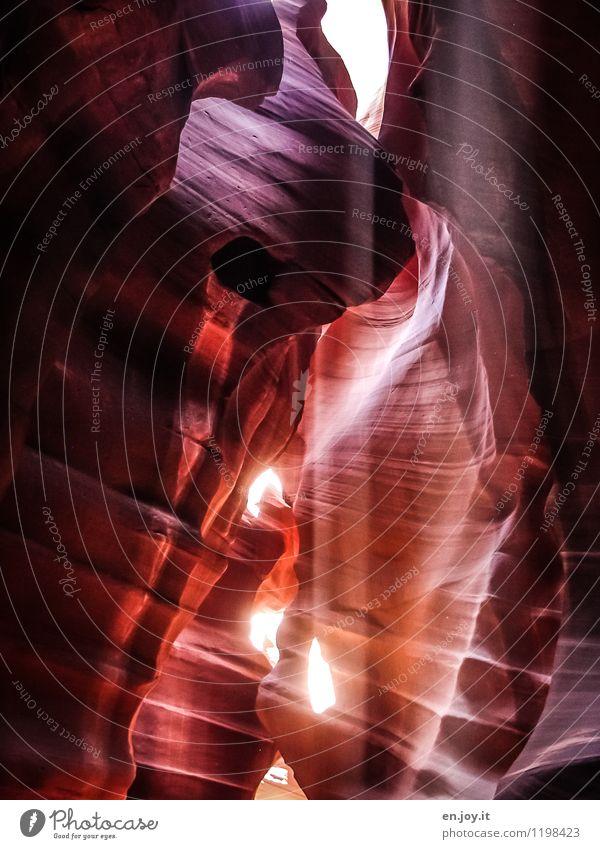 Scotty... Natur Ferien & Urlaub & Reisen Sommer Landschaft Umwelt Glück außergewöhnlich Felsen orange Tourismus Kraft Klima Abenteuer Hoffnung Platzangst Glaube