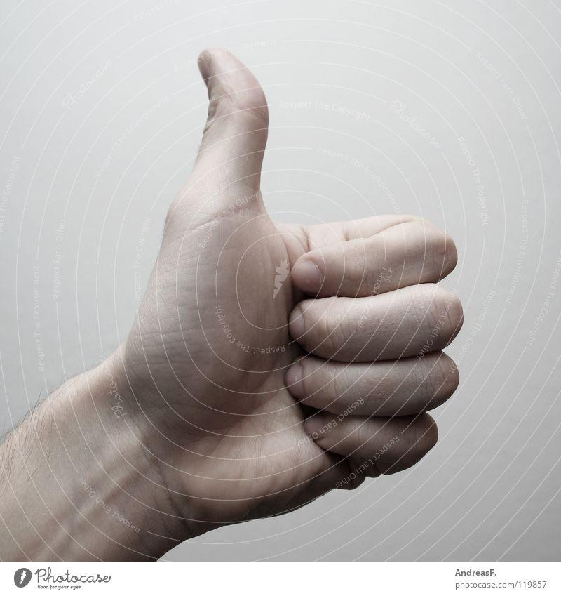 Eins. 1 2 3 Ziffern & Zahlen Hand Daumen Finger gestikulieren Symbole & Metaphern Erfolg Bravo Top loben Mathematik Gebärdensprache Konzentration one zählen
