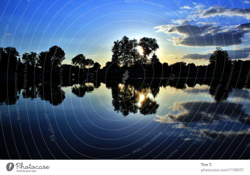 Brandenburg Umwelt Natur Landschaft Wasser Wolken Sonnenaufgang Sonnenuntergang Sommer See Umweltschutz Farbfoto Außenaufnahme Menschenleer Morgen
