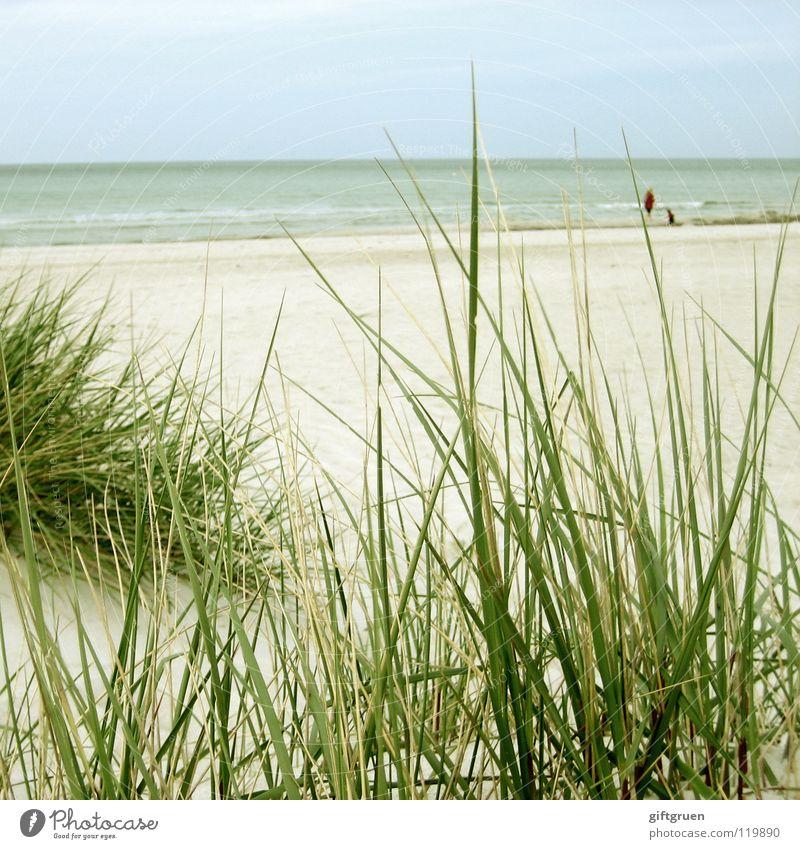 prerow, ostsee Wasser Himmel Meer blau Freude Strand Ferien & Urlaub & Reisen ruhig Wolken Ferne grau Sand Küste Wetter Spaziergang Frieden