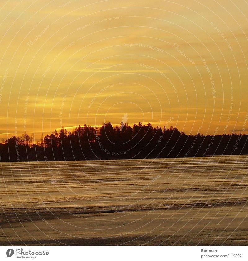 Goldener Abend gelb See Winter gefroren glänzend schwarz Wolkenhimmel Abenddämmerung Nachmittag weiß ruhig Streifen Küste Gewässer Horizont Sonnenuntergang kalt