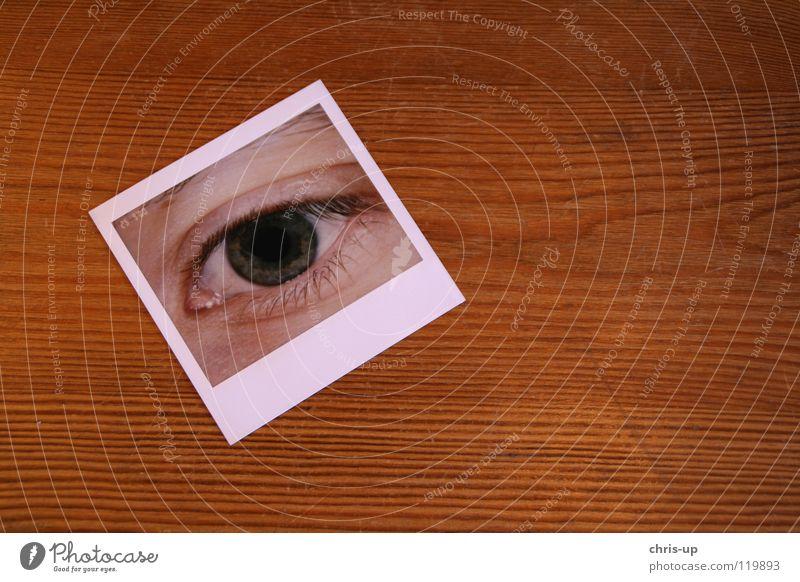 Mein Auge Pupille Wimpern Augenbraue Lidschatten grün Aussicht Durchblick Aussehen Blick Fotografie Sofortbildkamera Polaroid Tisch Holztisch Spiegel bildlich