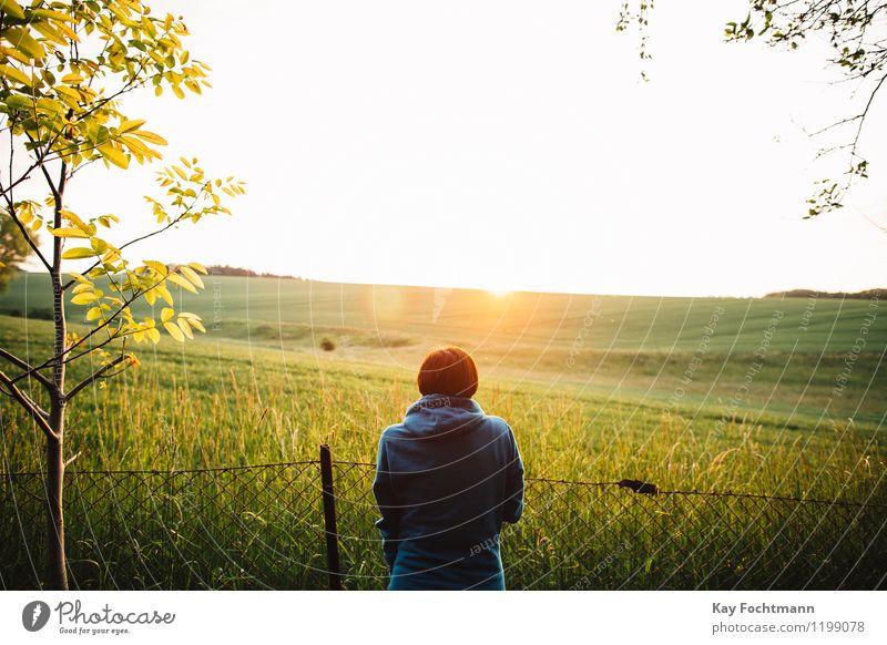 Junge Frau schaut auf ein Feld in der Abendsonne Mensch Natur Ferien & Urlaub & Reisen Jugendliche Sommer Landschaft Erholung Einsamkeit ruhig Ferne 18-30 Jahre