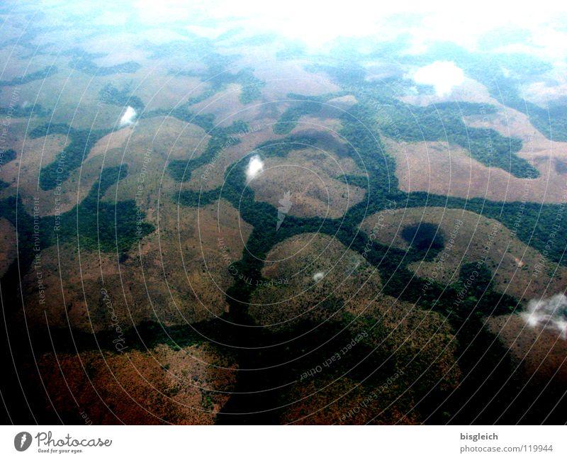Kamerun von oben IV Wolken Einsamkeit Ferne Wald Berge u. Gebirge Flugzeug fliegen Afrika Urwald