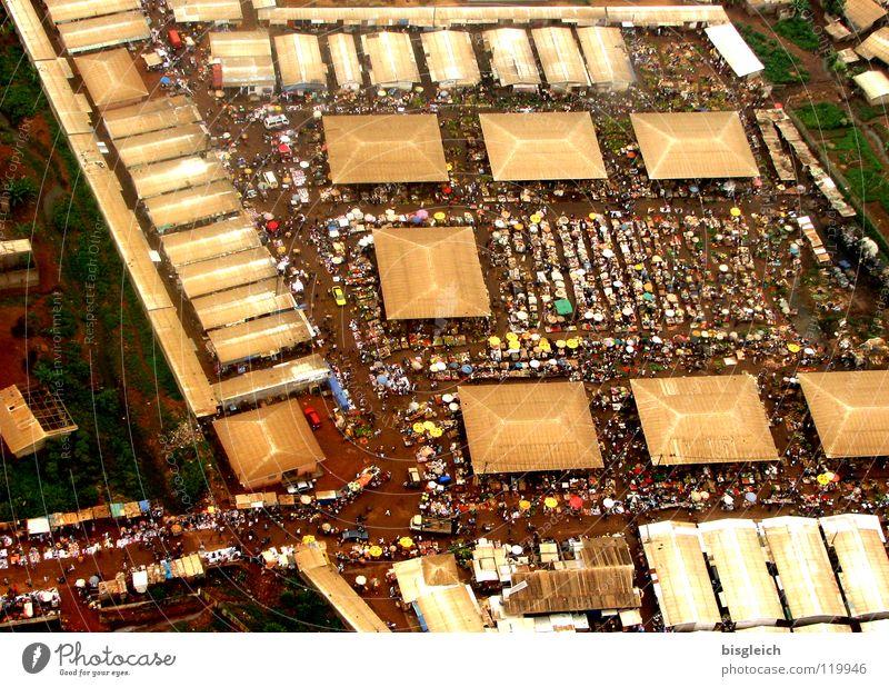 Kamerun von oben V Stadt Haus PKW Flugzeug Afrika Verkehrswege verkaufen Markt Hauptstadt Marktplatz Luftaufnahme