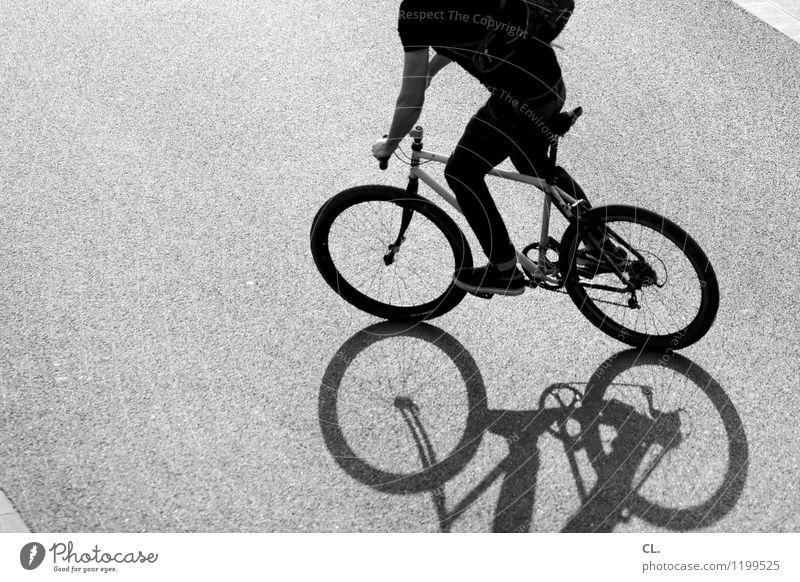 rumfahren Mensch Jugendliche Junger Mann Freude Leben Straße Bewegung Wege & Pfade Sport maskulin Freizeit & Hobby Kraft Fahrrad Verkehr Fahrradfahren
