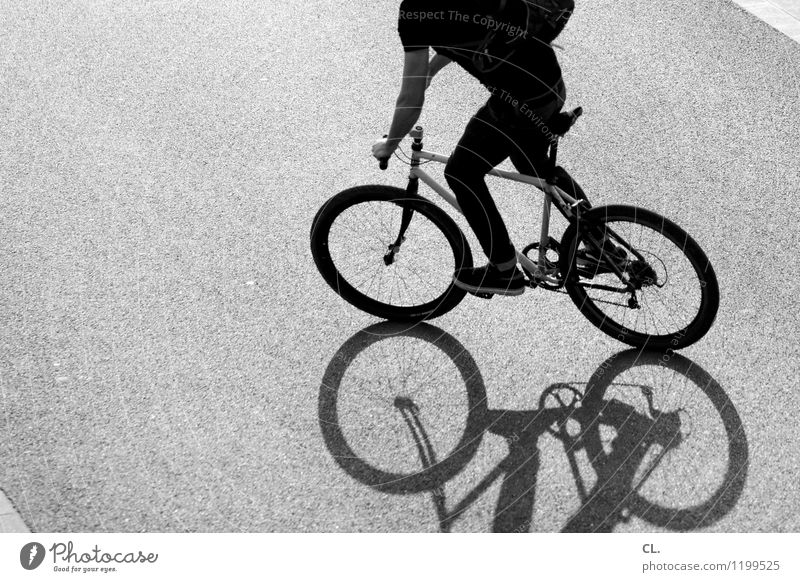rumfahren Mensch Jugendliche Junger Mann Freude Leben Straße Bewegung Wege & Pfade Sport maskulin Freizeit & Hobby Kraft Fahrrad Verkehr Fahrradfahren fahren