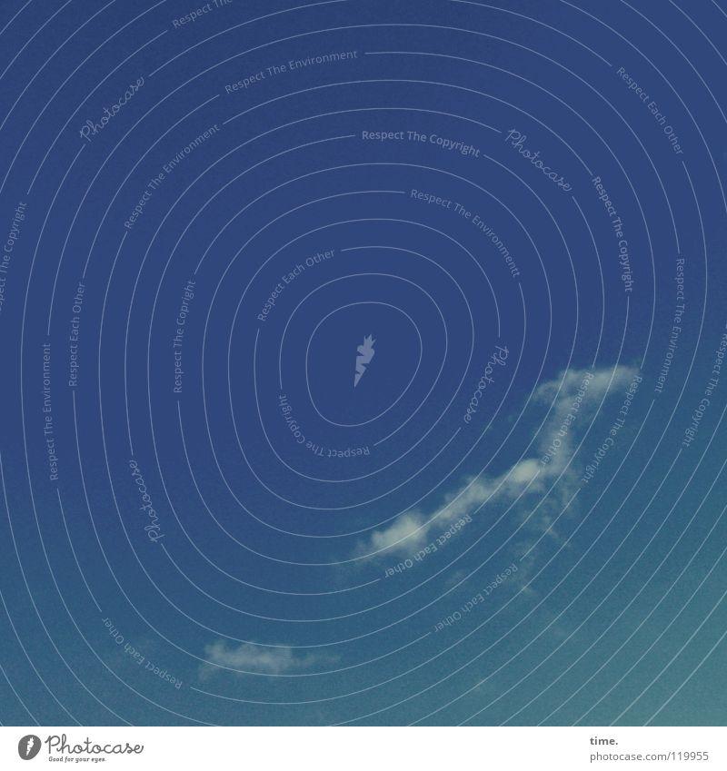 WolkenWindHund Schweben türkis grün ähnlich assoziativ aufsteigen Vergänglichkeit Sommer Himmel fliegen blau Fantasygeschichte Silhouette Strukturen & Formen