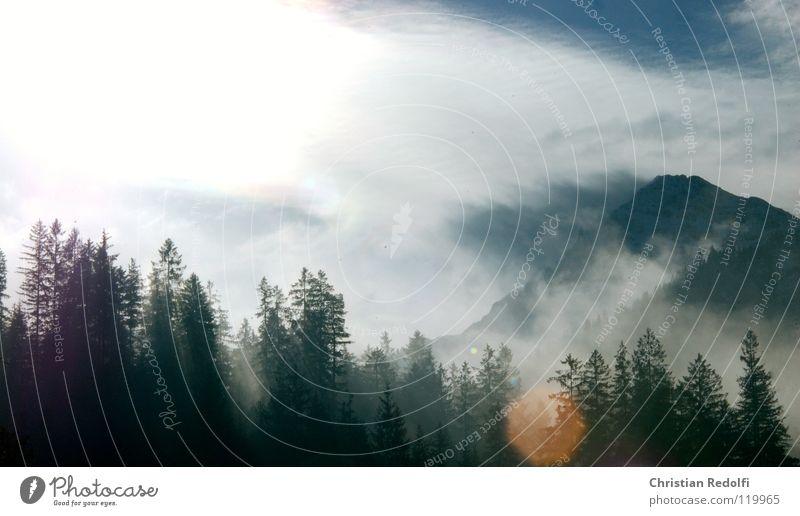 10.00 Uhr i... Wald Baum Morgen Nebel Tau Sonnenaufgang Wolken Himmel Ber Landschaft 10:00 10uhr zehnuhr