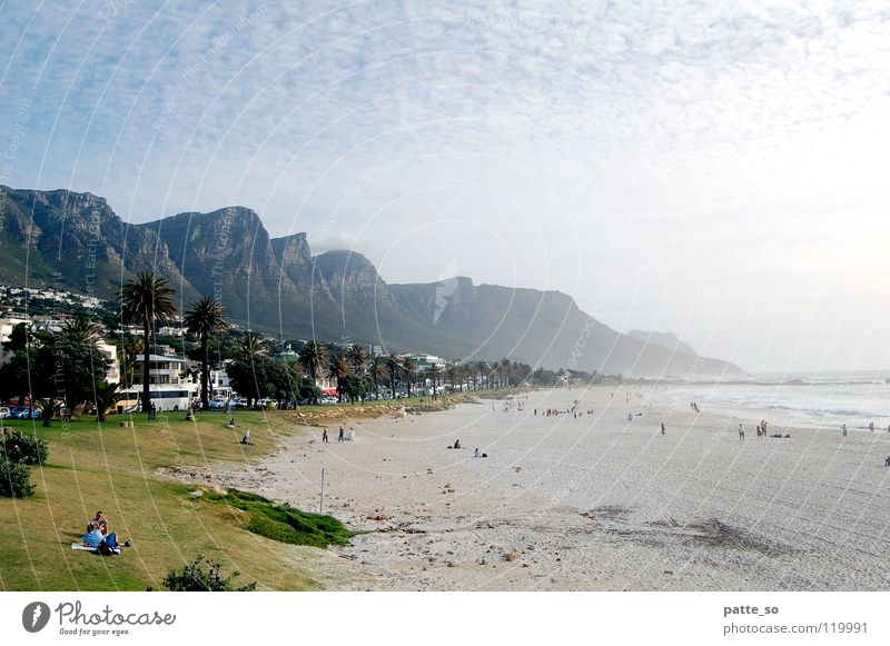 Strand und Berge Kapstadt Wasser grün Strand Berge u. Gebirge Wärme Sand Afrika Physik Palme