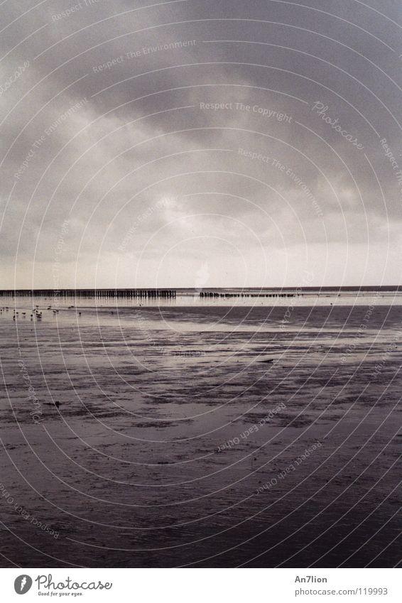 Ebbe Wasser Meer ruhig Wolken Einsamkeit Ferne Ameland