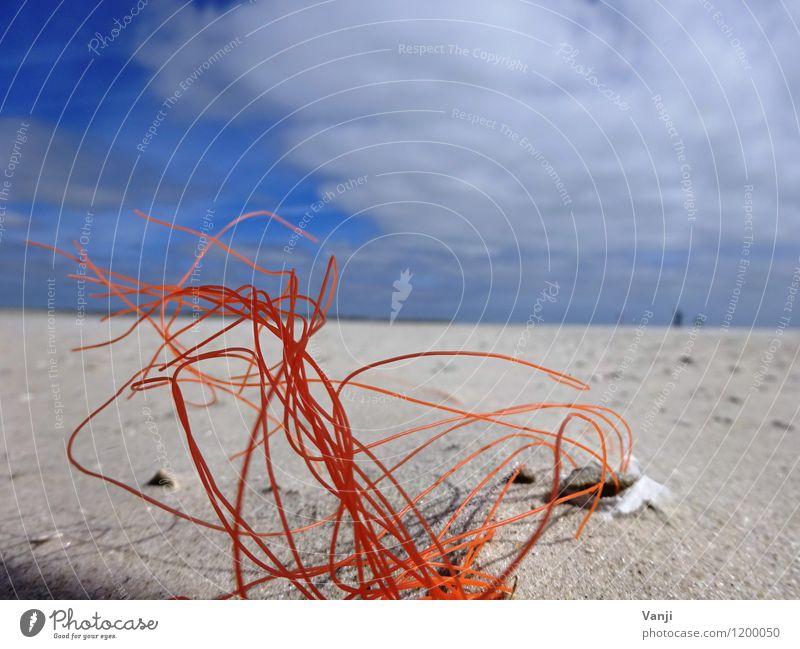 Im Sand 2 Ferien & Urlaub & Reisen Sonne Strand Natur Luft Himmel Kunststoff Linie dünn orange Schnur Sträucher Farbfoto Außenaufnahme abstrakt