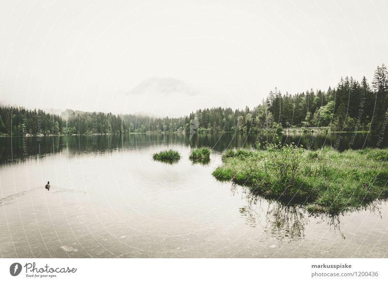 hintersee, ramsau, berchtesgaden Ferien & Urlaub & Reisen Sommer Sonne Erholung ruhig Ferne Berge u. Gebirge Leben Sport Gesundheit Freiheit See