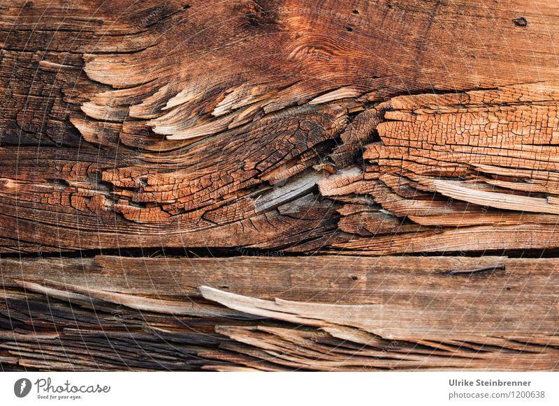 Walser Holz Art 1 alt Haus Wand Wärme Architektur natürlich braun Fassade Schutz trocken Dorf Tradition Holzbrett Umweltschutz Riss nachhaltig