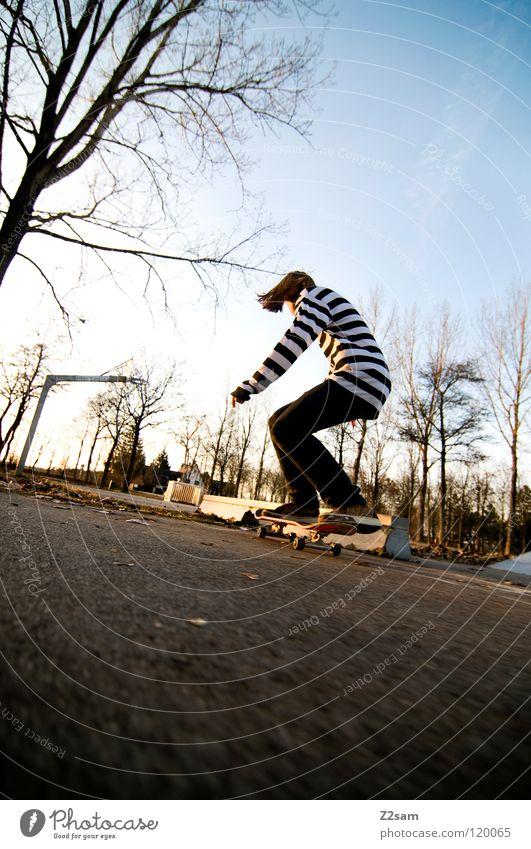 KONZENTRATION Konzentration fahren Skateboarding Zufahrtsstraße Teer Geschwindigkeit Sport Aktion gestreift Stil Jugendliche lässig Knie Baum Basketballkorb