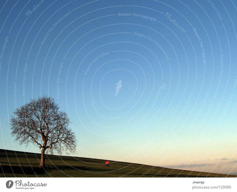 Spazieren gehen Natur Baum rot ruhig Einsamkeit Ferne Wiese Berge u. Gebirge Freiheit Paar Horizont Spaziergang Freizeit & Hobby Hügel Partner