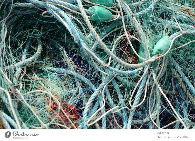 Netzwerk 4 Fischerboot Schnur Knoten fangen dreckig dunkel Ekel maritim grün nachhaltig Natur Angeln Fischernetz kaputt Farbfoto Gedeckte Farben Außenaufnahme