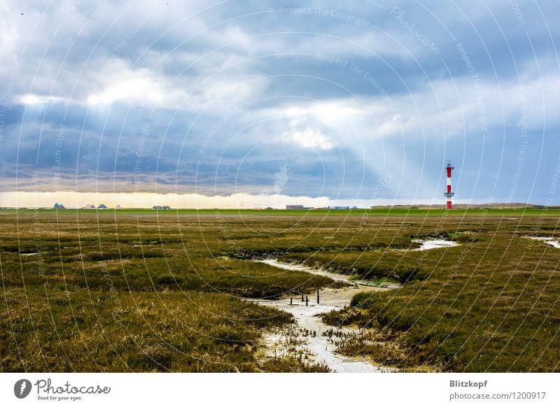 Lighthouse to heaven Ferien & Urlaub & Reisen ästhetisch blau grün Hoffnung Sehnsucht Wangerooge Leuchtturm Sonnenstrahlen Wolken Weide Bach Insel Farbfoto