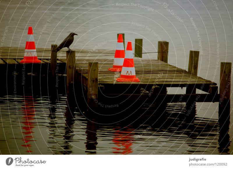 Abwehrmaßnahmen Steg See Krähe Attrappe Barriere grell Streifen Steinhuder Meer Anlegestelle Reflexion & Spiegelung Wasseroberfläche trist grau dunkel