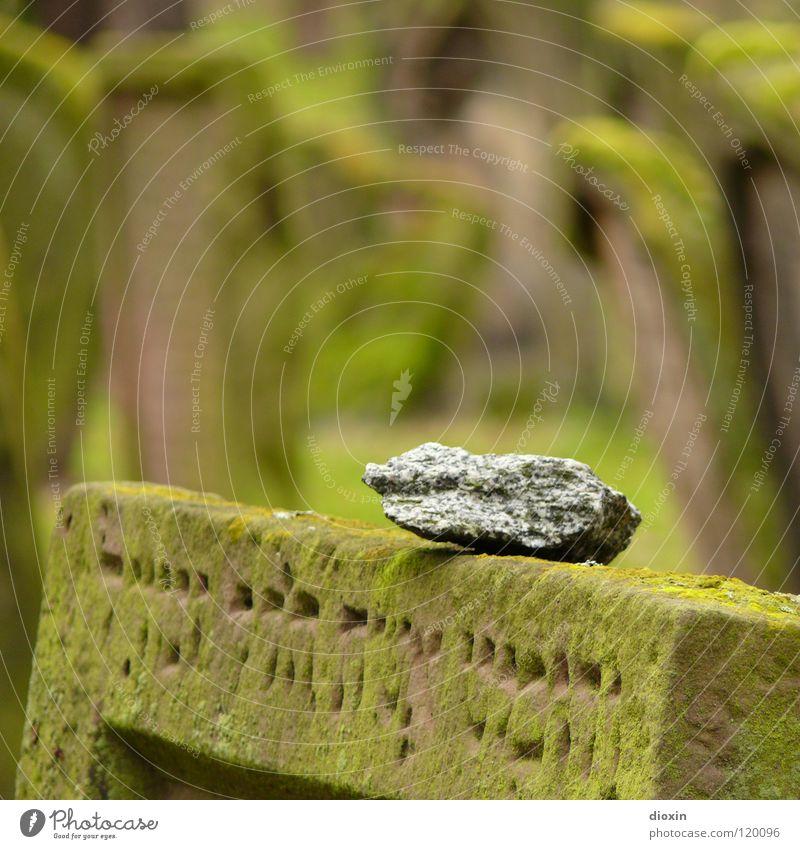 Heiliger Sand 3 Moos Stein Zeichen Schriftzeichen alt grün Güte Traurigkeit Trauer Tod Verzweiflung Religion & Glaube Vergänglichkeit Friedhof Worms Grabstein
