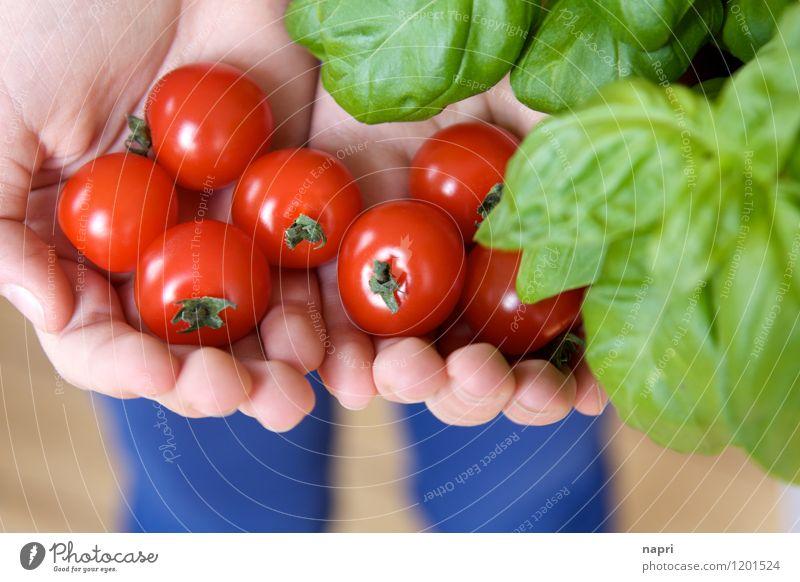 und dann noch Mozzarella... Gemüse Kräuter & Gewürze Tomate Cherrytomaten Strauchtomate Basilikum Ernährung Bioprodukte Vegetarische Ernährung Slowfood