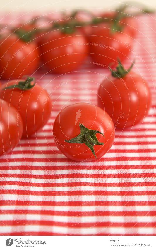 very cherry Strauchtomaten Gemüse Tomate Bioprodukte Vegetarische Ernährung Italienische Küche Tischwäsche genießen rot mehrere kariert gesund Farbfoto
