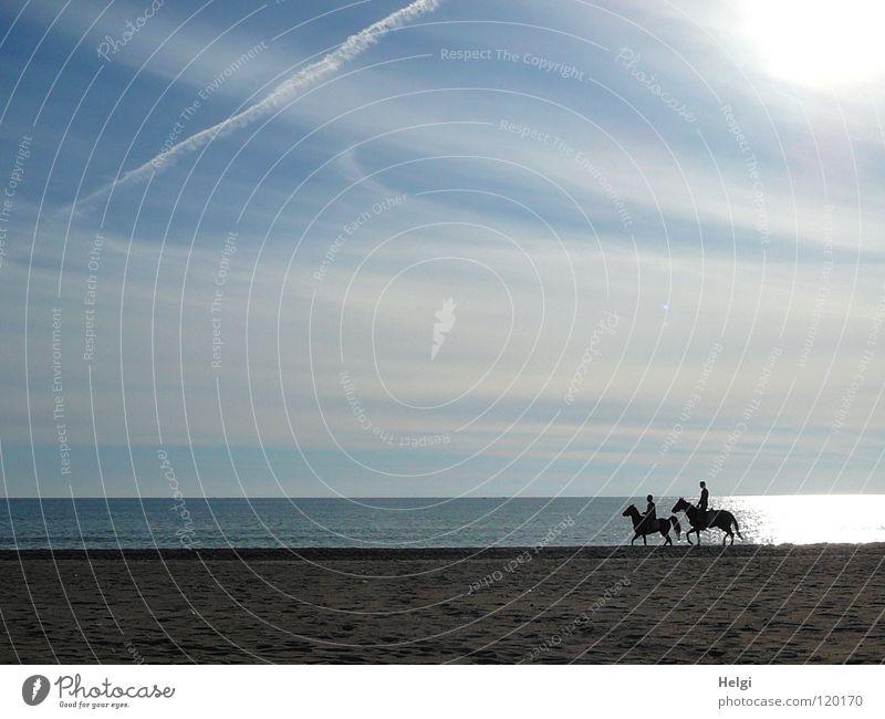 Ausritt am Strand... träumen Pferd Schwanz Hand Pferdegangart Küste Meer See Meerwasser Wolken Sonne Licht Gegenlicht Ferien & Urlaub & Reisen Erholung