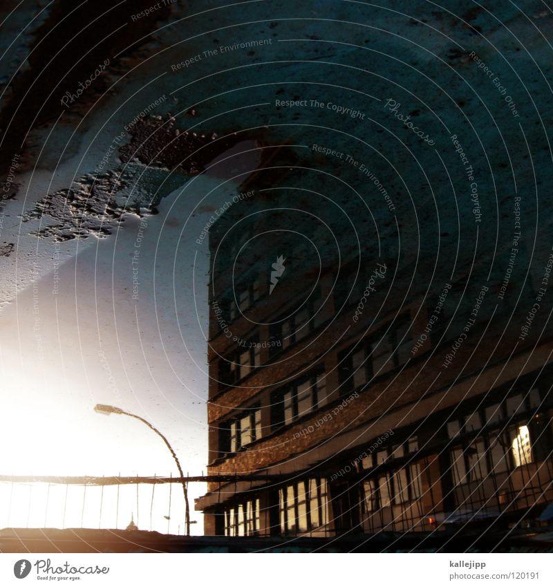 mado´s block Pfütze Reflexion & Spiegelung Stadt Lampe Laterne Sonnenuntergang Romantik Haus Gebäude Mieter Herbst Wohnung Vermieter Blatt Baum laublos nass