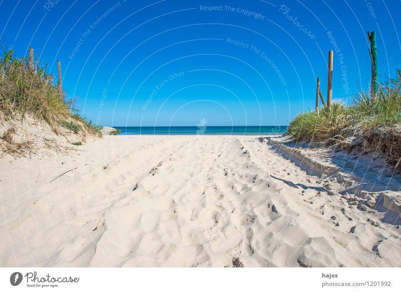 Ostseestrand in Ustka, Polen schön Ferien & Urlaub & Reisen Tourismus Ferne Sommer Strand Meer Umwelt Natur Landschaft Wolkenloser Himmel Horizont Frühling
