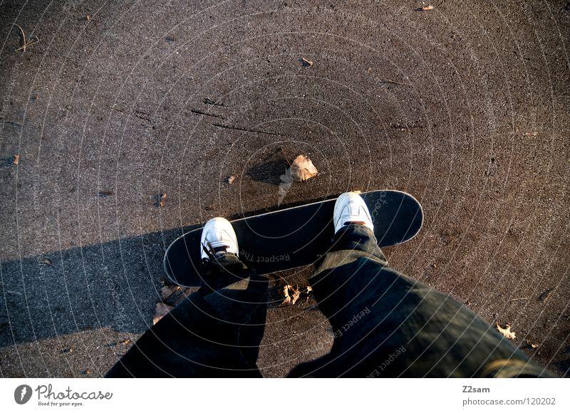 auf achsen fahren Skateboarding Vogelperspektive Schuhe Blatt Teer Beton Weitwinkel lang Sport lässig Funsport Mann Spielen Rolle Perspektive Holzbrett Parkdeck