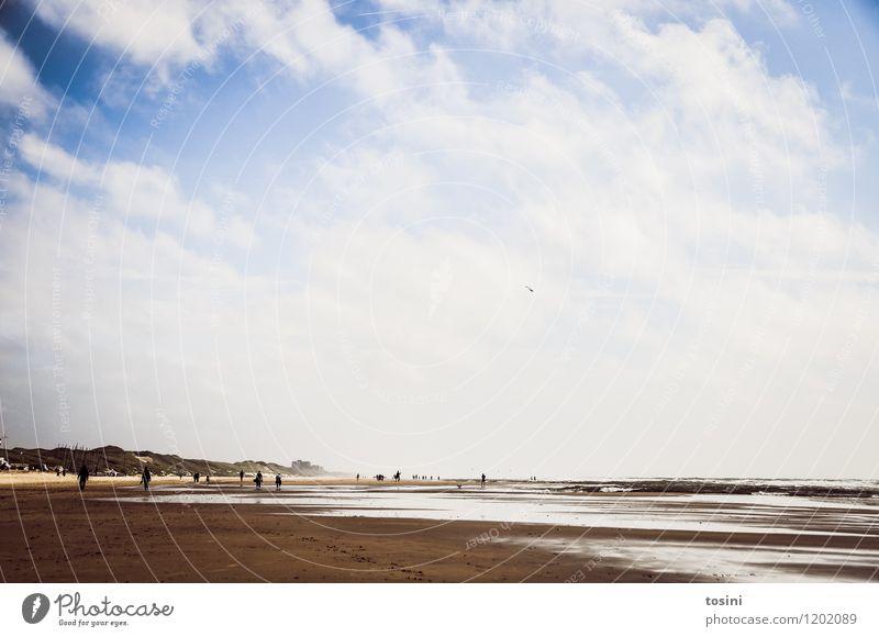 Ebbe Mensch Umwelt Natur Sand Wasser nur Himmel Wolken Wellen Küste Seeufer Strand weiß Meer Gezeiten Spaziergang Düne Stranddüne Ferien & Urlaub & Reisen Ferne