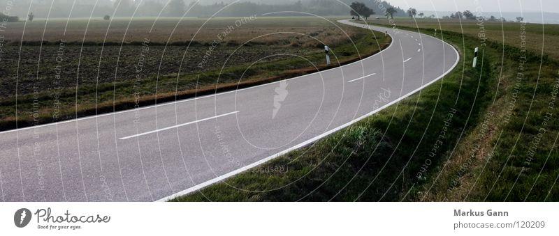 Kurve Landstraße Asphalt Schnellstraße leer Seitenstreifen Horizont Zukunft Richtung weiß grau schwarz Schwarzwald Verkehr Straße Wege & Pfade grass Nebel Linie