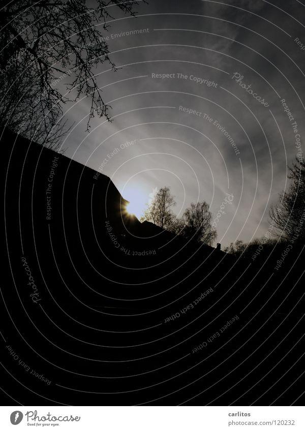 Dunkel war's, der Mond schien helle .... Baum Sonne Haus schwarz dunkel Angst Stern Stern (Symbol) gefährlich Panik unheimlich unsicher Himmelskörper & Weltall