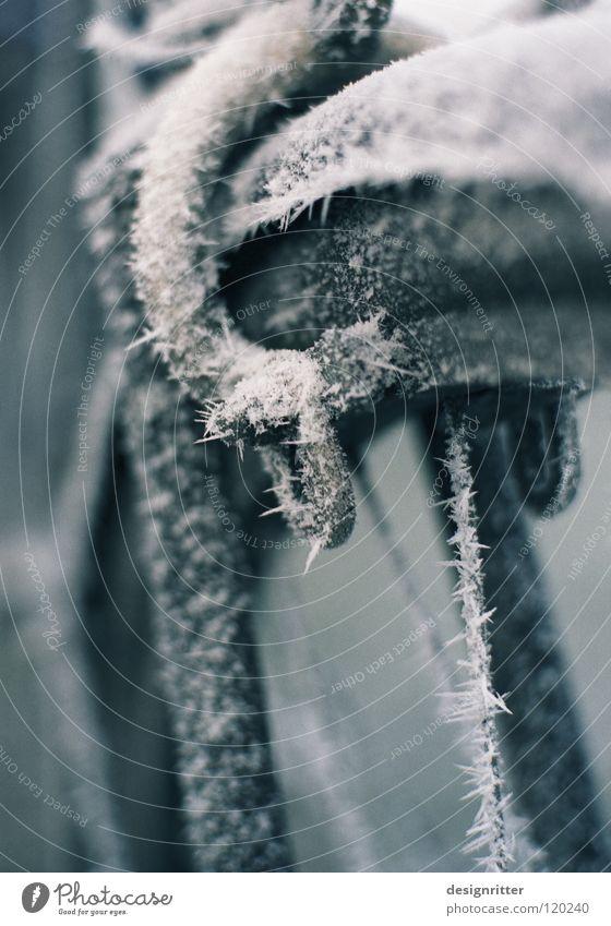 Winterschlaf (2/3) Fahrrad fahren Felge Speichen stoppen Sicherheit schalten festhalten berühren kalt Eis Raureif gefroren frieren Mantel Schutzschicht schlafen