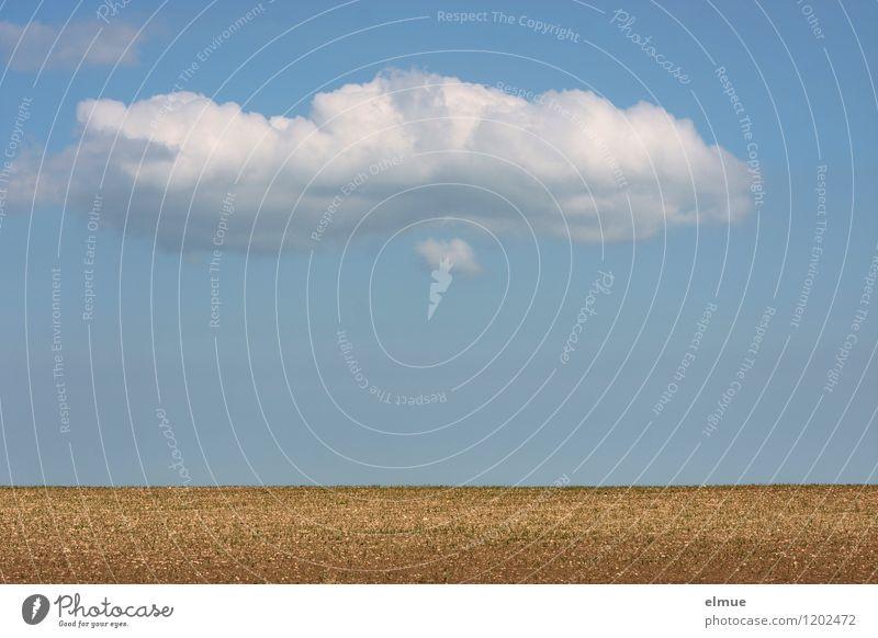 Dekowolke über einem Acker Himmel Natur blau weiß Sonne Landschaft Wolken Ferne Umwelt Frühling Glück Freiheit braun Horizont Zufriedenheit Feld