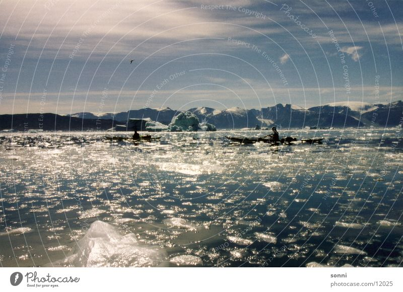 Eismeer Wasser ruhig Einsamkeit kalt Frieden Kanu