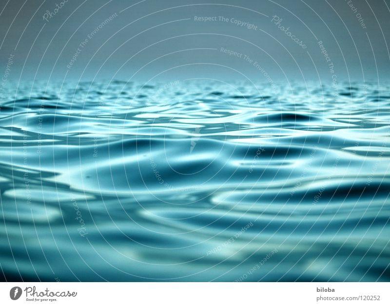 Wellen auf dem See im sanften Gegenlicht Wasser Flüssigkeit liquide Frieden Ferne nass ruhig ruhen beruhigend Rettung Sturm Wind Wetter Meteorologie Nebel Leben