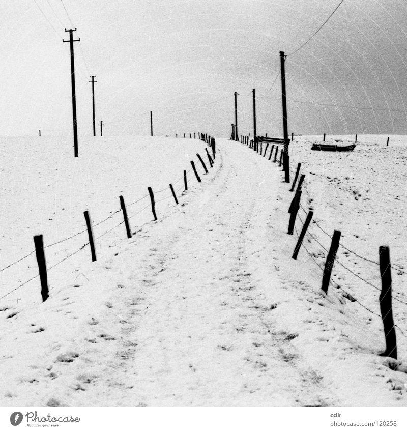 Winterreise Spazierweg Fußweg Horizont Luft Strommast Feld Wiese Zaun Jahreszeiten kalt weiß Menschenleer Einsamkeit ländlich Erholung atmen Spaziergang wandern