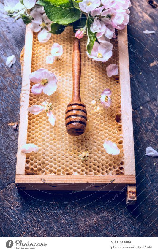 Honig Waben mit Blüten und Honiglöffel Natur Blatt Gesunde Ernährung dunkel gelb Leben Stil Hintergrundbild Garten Lebensmittel Design Tisch Süßwaren