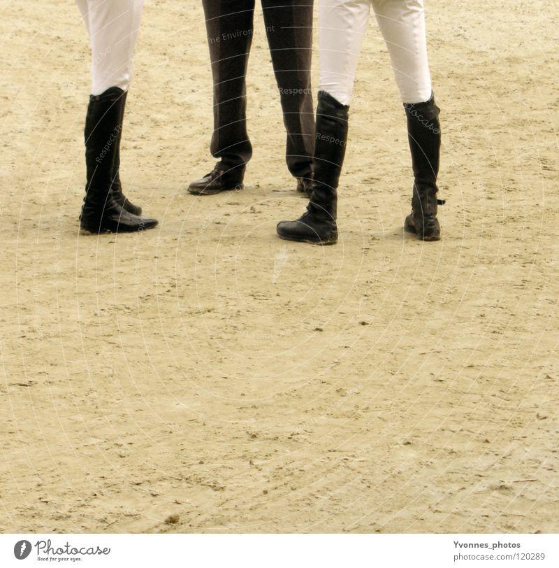 Meeting weiß Spielen Sand Menschengruppe Beine Fuß Schuhe Erfolg 3 Sportmannschaft dünn Sitzung Hose Rennsport Reitsport Sportveranstaltung