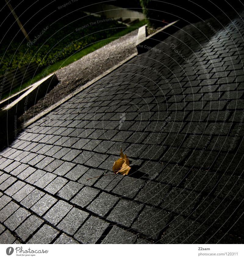 herbst Herbst Blatt graphisch einfach glänzend grün Park Bordsteinkante Ecke grau braun dunkel Nacht ruhen Natur Stein Kopfsteinpflaster Schatten