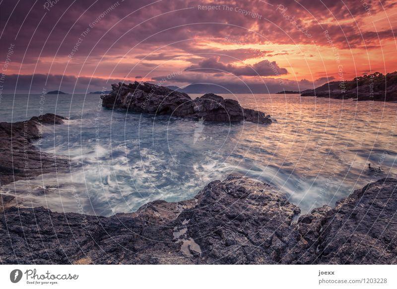 Ein Meer sein Sommerurlaub Natur Landschaft Wasser Himmel Wolken Sonnenaufgang Sonnenuntergang Schönes Wetter Felsen Wellen Küste wild braun orange Ferne Lava